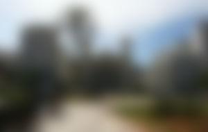 Spedizione economica in Algeria