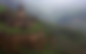 Spedizione economica in Armenia