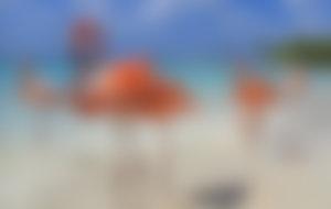 Spedire pacchi espressi a Aruba