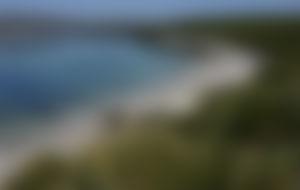 Spedizione economica in Isole Falkland (Isole Malvine)