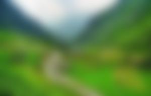 Envios a Pakistán Express