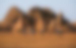 Spedizione economica in Sudan